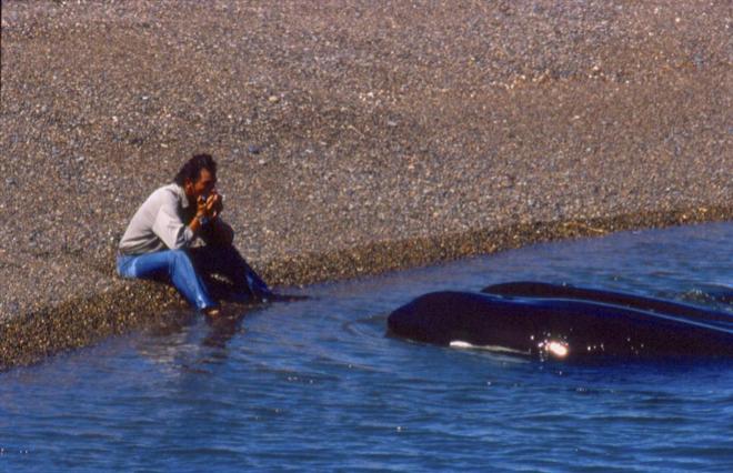 Roberto Bubas, guardafauna de Patagonia (Argentina), setnado en la orilla observando reflexivo a una orca, a unos metros de su lado, que inspiró la película 'El faro de las orcas'.