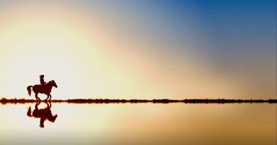 Amazona trotando sobre el horizonte de la laguna (Fuente: Pixabay.com)