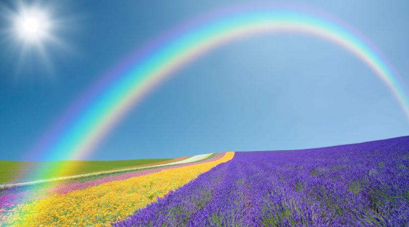 Arcoiris sobre campos multicolor