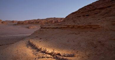 Cementerio de ballenas (Wadi Hitan, en el nordeste de Egipto)