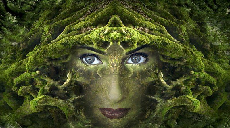 Fantasy (Fuente: Pixabay.com)