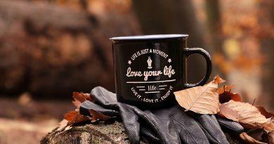 Guantes y taza con el lema en inglés 'ama tu vida' sobre tronco en bosque otoñal