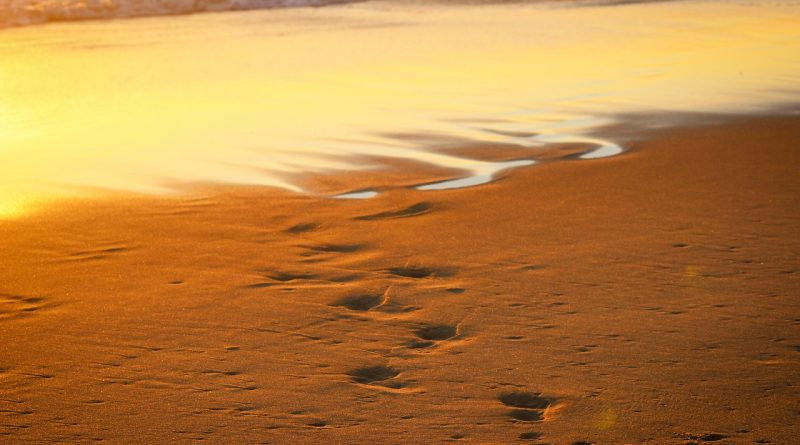 Huellas que se pierden entre las olas (Fuente: pixabay.com)