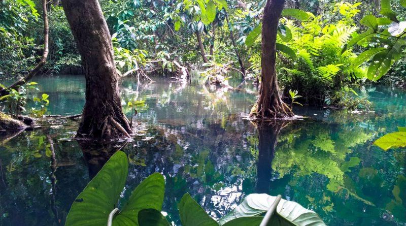 Aguas turquesas en la jungla de Laos