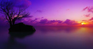 ocaso violeta en el lago quieto