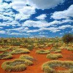 Desierto de Australia