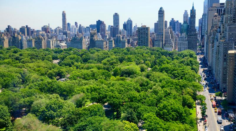 Parque de Nueva York