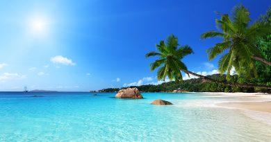 En el horizonte, barco sobre aguas tropicales turquesas y palmera en playa